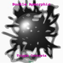 Trippa Concreta by Buckle Apmorphic (cover)