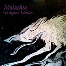 lab reports selection by malachia